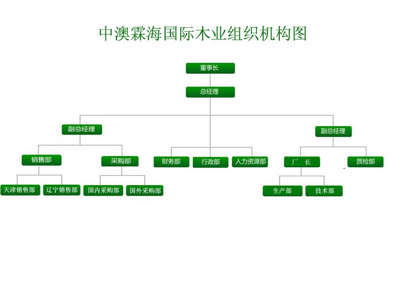 贸易公司组织结构图图片